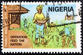 Stamp printed in nigeria dedicated to operation feed the nation shows family backyard farm