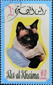 RAS AL-KHAIMAH - CIRCA 1971: A stamp printed in Ras al-Khaimah shows a cat circa 1971