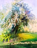 stock photo of expressionism  - Watercolor painting of the blooming spring tree - JPG