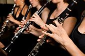 stock photo of clarinet  - Clarinetist qurtet music performance - JPG
