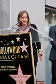 LOS ANGELES - NOV 4:  Laura Joplin at the Janis Joplin Hollywood Walk of Fame Star Ceremony at Hollywood Blvd on November 4, 2013 in Los Angeles, CA