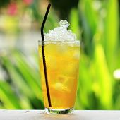 Refresment Cold Herb Drink