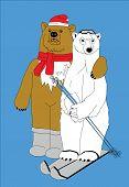 Two Bear