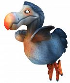 image of terrestrial animal  - Dodo - JPG