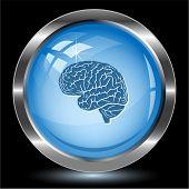 Brain. Internet button. Vector illustration.