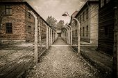 stock photo of nazi  - Electric fence in former Nazi concentration camp Auschwitz I - JPG