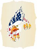 Old Paper, Eagle And American Flag