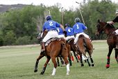 Polo Team Chasing