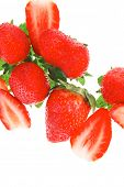 raw fruits: fresh ripe strawberry isolated over white
