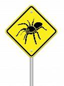 spider- tarantula Caution Sign