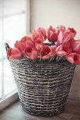 Vintage rustic photo of bouquet of spring tulips in a wicker basket on floor near window