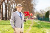 Senior male holding bouquet of red tulips in park
