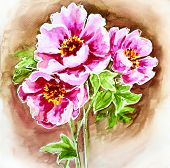 Painted watercolor card with peony flowers
