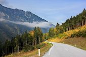 Beautiful autumn day in the Austrian Alps. Road in the mountains of beginners yellowing pines and sp