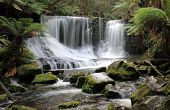 Waterfall in Mount Field National Park Tasmania