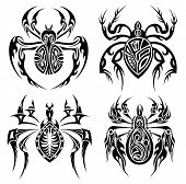 Tribal spiders