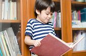 Boy In Library Holding Book