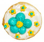 Spring Theme Frosted Cookie High Angle View Over White.