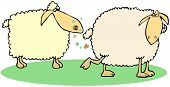 image of fart  - This illustration depicts a sheep letting farts in anothers face - JPG