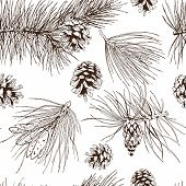 pic of pine cone  - Pine fir christmas tree cedar spruce and cones seamless pattern vector illustration - JPG