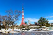 picture of minato  - Tokyo Tower in the winter view from Shiba Park in Tokyo Japan