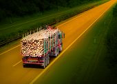 stock photo of logging truck  - Logging truck on the highway - JPG