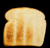 Toasted White Bread