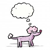 cartoon poodle