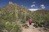 Hiker In The Desert - Saguaro National Park, Arizona