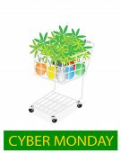 Lovely Tree Pot In Cyber Monday Shopping Cart