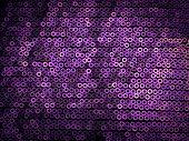 Violet Sequins Embroidered
