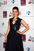 LOS ANGELES - OCT 6:  Bellamy Young at the Les Girls 14 at Avalon on October 6, 2014 in Los Angeles,