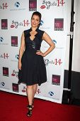 LOS ANGELES - OCT 6:  Bellamy Young at the Les Girls 14 at Avalon on October 6, 2014 in Los Angeles, CA
