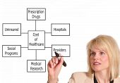 picture of health-care  - Female executive drawing health care diagram on a whiteboard - JPG