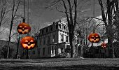 An old haunted house surrounded by bare trees. Spooky looking Jack O' Lanterns hanging on ropes from the trees. It's Halloween Night.