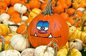 humorous fall pumpkin