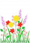 Springflowers.pdf