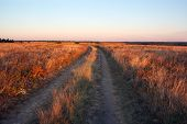 Field With A Footpath At Sunset