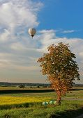 Rural Landscape And Hotair Balloon