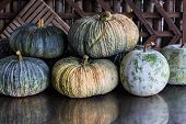 Still Life Pumpkins And Winter Melon With Wood Background