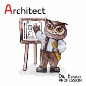 Alphabet professions Owl Architect character on a white background Vector Watercolor