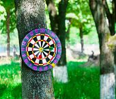 Old board game of darts.