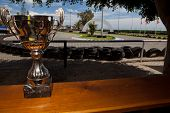 foto of karts  - Silver cup as a price of karting competition beside the circiut