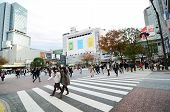 Tokyo, Japan - November 28, 2013: Crowds Of People Crossing The Center Of Shibuya