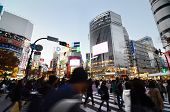 Tokyo, Japan - November 28, 2013: Crowds Of People Crossing The Center Of Shibuya District