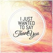 Inspirational Typographic Quote - I just wanted to say thank you