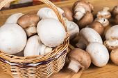 White And Brown Mushrooms In A Basket