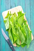 stock photo of sorrel  - green sorrel on wooden plate and on a table - JPG