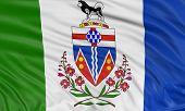 3D Yukon Flag