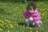 Little Curly-haired Girl Sitting On The Field In Dandelions.
